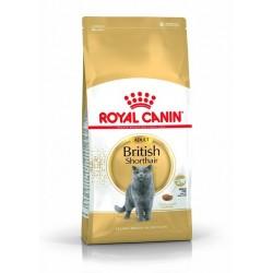 ROYAL CANIN British Shorthair adult 0.4 kg