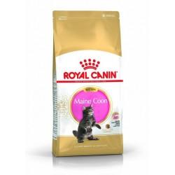 ROYAL CANIN Maine Conn Kitten 4 kg